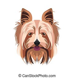 Illustration Yorkshire Terrier | For all dog owners. What...