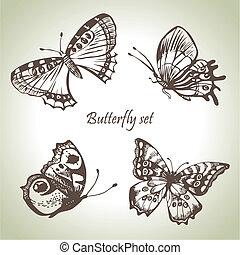 illustrations, dessiné, ensemble, butterfly., main