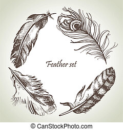 illustrations, dessiné, plume, set., main