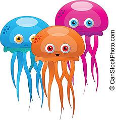 illustrations, fish, gelée, coloré