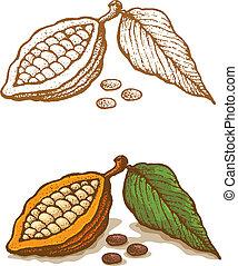 Illustrations of cocoa in retro style