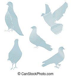 illustrations, pigeons, vecteur, résumé, ensemble