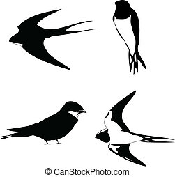 swallow vector outline silhouette - illustrato swallow...