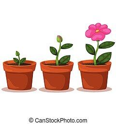 illustrator, bloem, van, groei