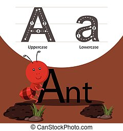 Illustrator of ant with a font