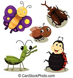 Illustrator of bug cartoon cute