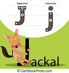 Illustrator of jackal with j font