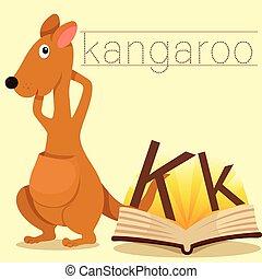 Illustrator of K for Kangaroo vocab