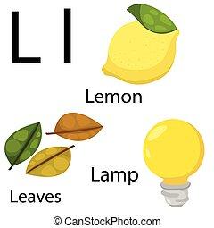 Illustrator of L alphabet
