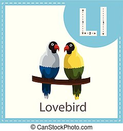 Illustrator of Lovebird