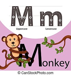 Illustrator of monkey with m font
