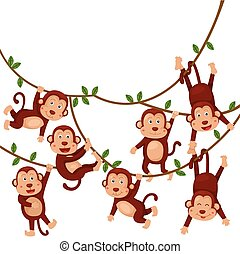 Illustrator of monkeys funny cartoon