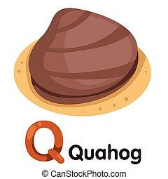 Illustrator of Q font with Quahog