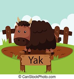 Illustrator of Yak in the zoo