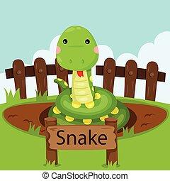 illustratore, serpente, zoo