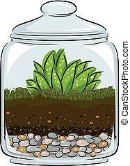 illustrazione, botanica, terrarium