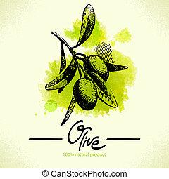 illustrazione, disegnato, acquarello, mano posteriore, oliva
