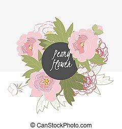 illustrazione, fiore, delicato, peonia