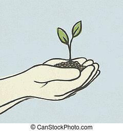 illustrazione, germoglio, eps10., sporcizia, hand-drawn, vettore, verde, mani, heap.