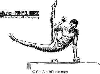 illustrazione, ginnastica, vettore
