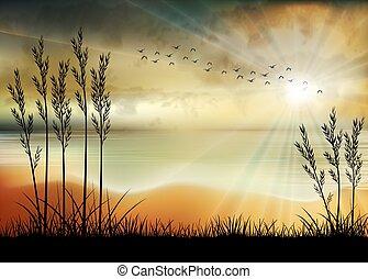 illustrazione, mattina, spiaggia, alba