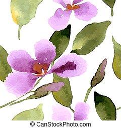 illustrazione, orchidea
