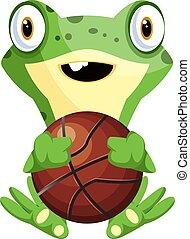 illustrazione, rana, fondo., vettore, bianco, pallacanestro, gioco, felice