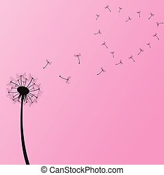 ilustração, dandelion
