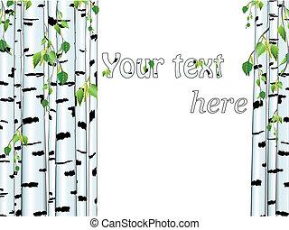 ilustração, de, a, vidoeiro, tronco, quadro