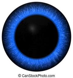 ilustração, de, olho azul, com, grande