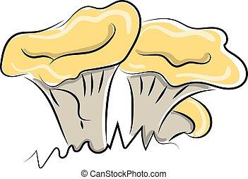 ilustração, grande, cogumelos, experiência., vetorial, branca