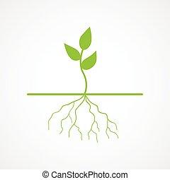 ilustração, jovem, gráfico, árvore