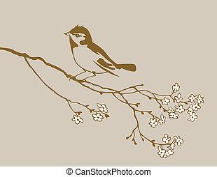 ilustração, marrom, pássaro, vetorial, fundo, silueta