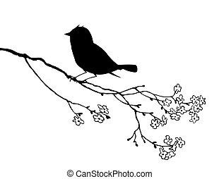 ilustração, pássaro, vetorial, fundo, silueta, branca