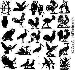 ilustração, silhuetas, pássaro, cobrança
