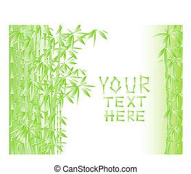 ilustração, verde, bambu