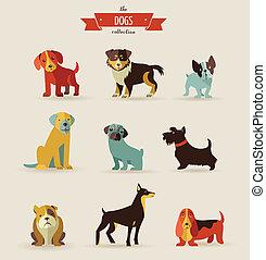 ilustrações, cachorros, ícones