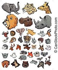 ilustrações, mamíferos, diferente, jogo, tipos