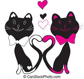 ilustrace, koty