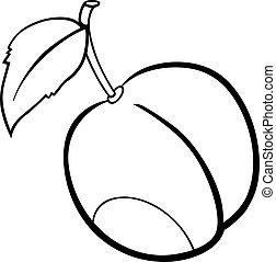 ilustración, ciruela, libro colorear, fruta