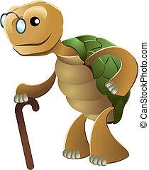 ilustración, de, anciano, tortuga