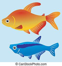 ilustración, de, peces