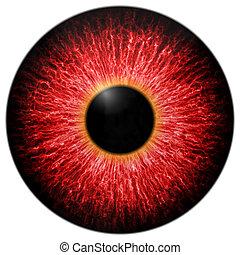 ilustración, de, rojo, asustadizo, ojo