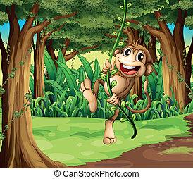 ilustración, de, un, mono, juego, con, el, vid, árboles, en el medio, de, el, bosque