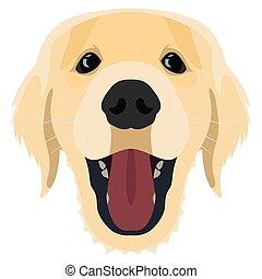 ilustración, dorado, perro, perro cobrador