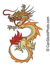 ilustración, dragón, asiático, vector