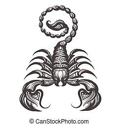 ilustración, escorpión, grabado