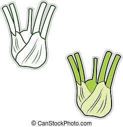 ilustración, fondo., vector, verde, hinojo, blanco