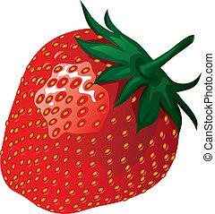ilustración, fresa