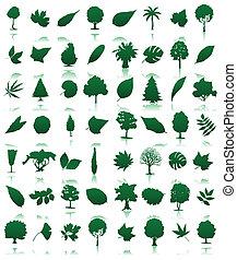 ilustración, iconos, leaves., colección, vector, árboles